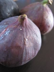 figues-002-copie-1.jpg