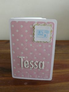 Mini-album-Tessa-2.jpg