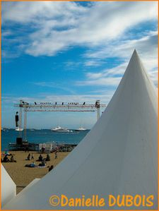 Festival Cannes 2012 04-2