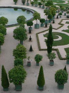 Versailles juillet (15)
