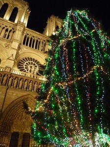 Notre-Dame-H.jpg