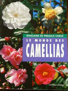Caméllias