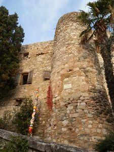 2012-11-18- Rando.Valaurie (Drôme) 037