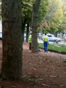 vichy-chasse-ouverte-10-octobre-2012-18h30