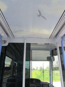 7-tram-orleans.JPG