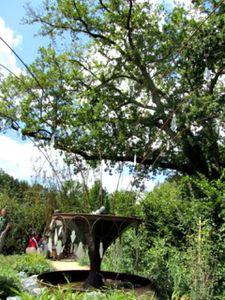 jardin-bijou-chaumont-4.jpg