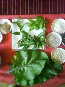 ingredients-verts-farce.JPG
