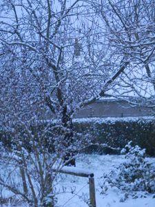 neige-005.JPG