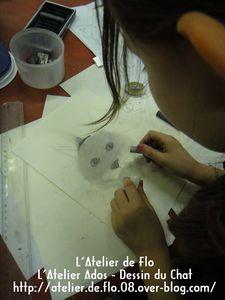 Oeil-de-chat-Atelier de Flo-Dessin-Peinture-Chat5