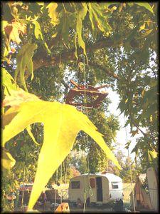aix-tabl-arbre-et-caravavane.jpg
