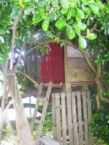 Cabane dans l'arbre.....