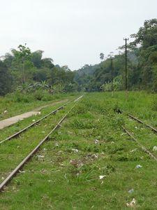 mvouti-gare-voie
