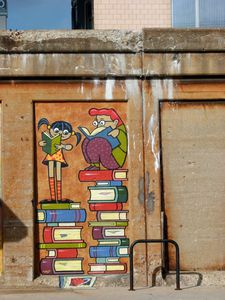 livres_150571_464824626902735_2082205561_n.jpg