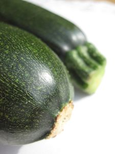 Courgettes--11-.JPG