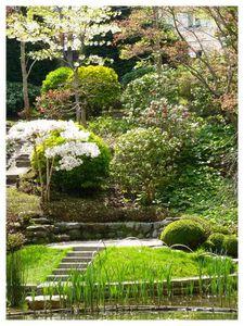 Jardin Albert Kahn avril 2010015