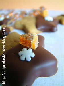 Gingerbread Chocolate Orange Stars-2