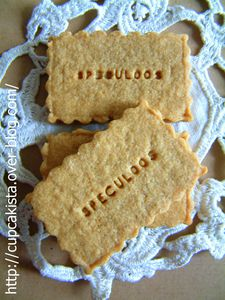 Speculoos-1