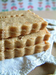 Speculoos-2