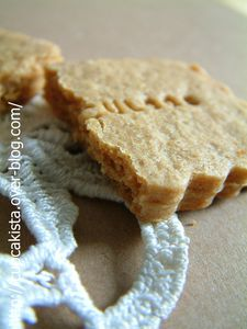 Speculoos-3
