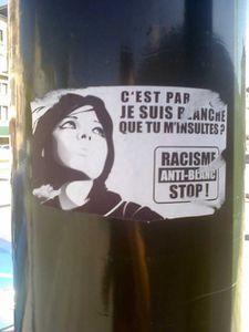 racisme-anti-blanc-500x666