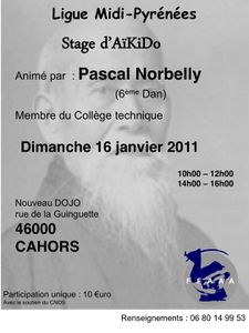 stage ligue p. norbelly(2)