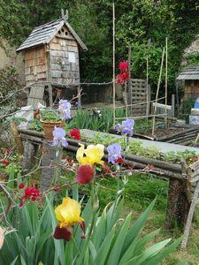 jardin 4