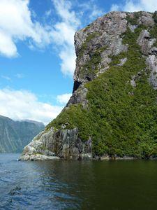 08 Fjordland - Milford Sound 33