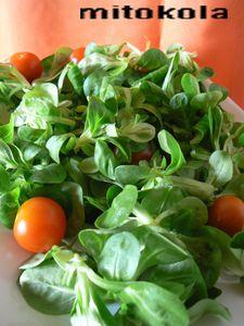 petite salade printanière (mâche)