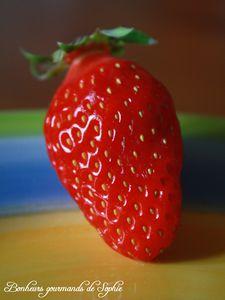 tartelette pistache fraise 2