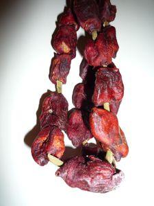 fruitsdemersechés-Valdivia (3)