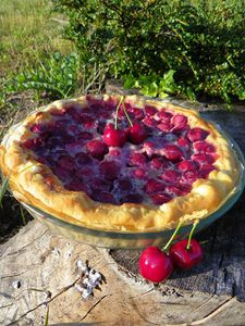 tarte aux cerises 2