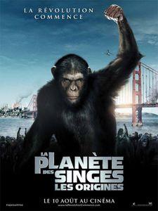 la-planete-des-singes.jpg