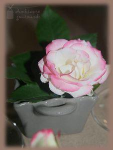 rose fete des meres