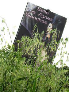 Affiche au milieu d'herbes folles 2
