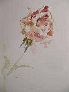 Rose-copie-2.jpg