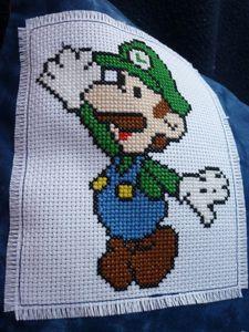 Coussin-Luigi.JPG