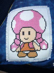 Coussin-Toadette.JPG