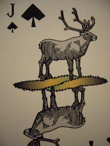 103 : Raindeer, jeu de carte