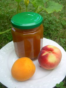 confiture abricot nectarine thermomix