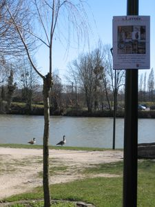lavoir-2010 4311