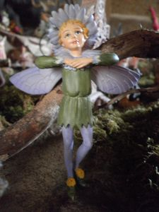elfe des asters 2