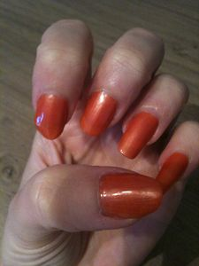 vernis-0758--2-couches--3-.JPG