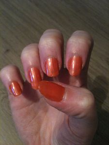 vernis-0758--2-couches--4-.JPG