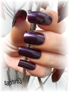 perfect-plum--4-.JPG