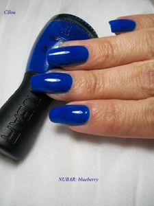 nubar blueberry