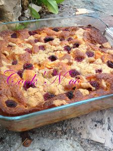 Gourmandise d'abricots et framboises