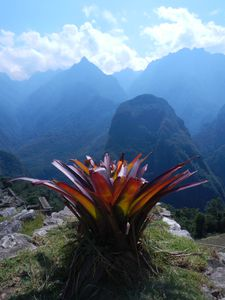 9 Machu Pichu (12)