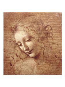 leonardo-da-vinci-female-head-la-scapigliata-c-150-copie-1.jpg