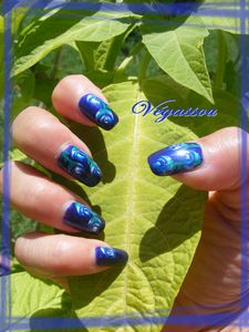 roses bleues (7)