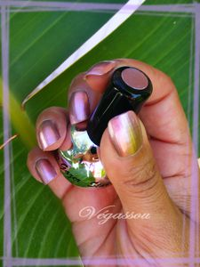 star gazer chrome (7)
